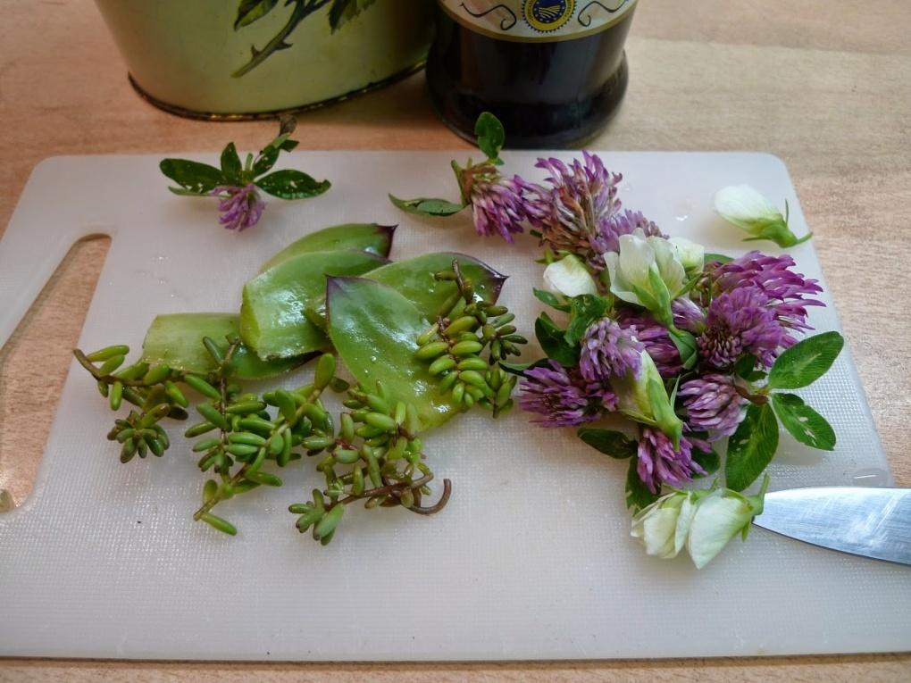 salatek-totalne-kvetinovy-01