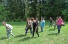 Terénní seminář na Šumavě