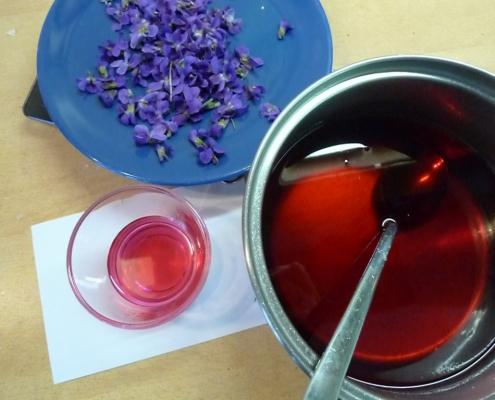 fialkový sirup