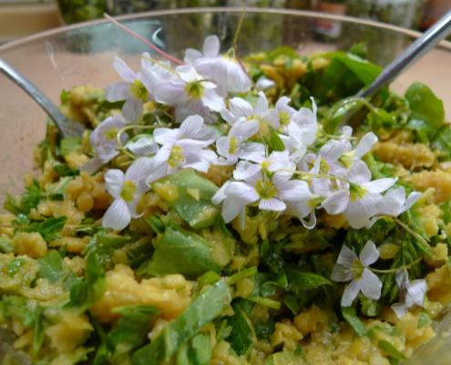 Salát z červené čočky s jarním býlím a květy šťavelu