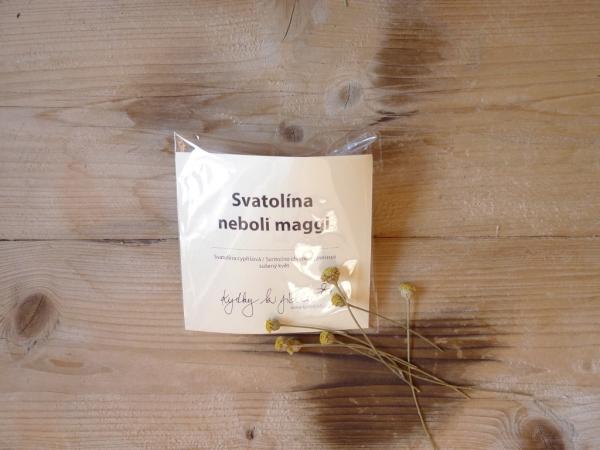 Svatolína sušený květ