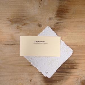 Ruční papír malý se semínky kopretiny bílé