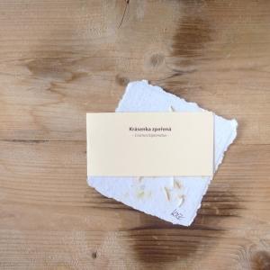 Ruční papír malý se semínky krásenky zpeřené
