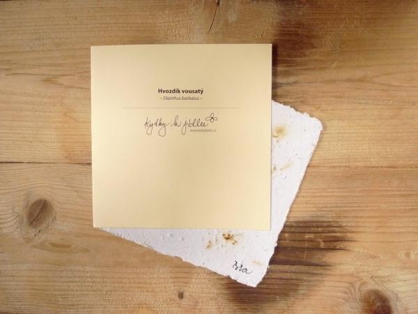 Ruční papír velký se semínky hvozdíku vousatého