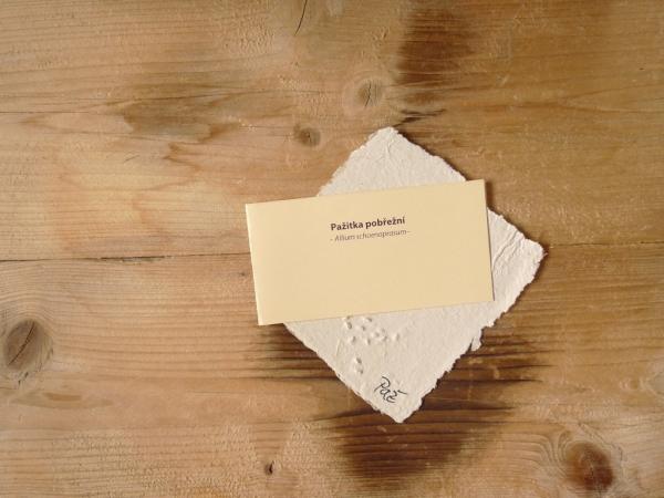 Ruční papír velký se semínky pažitky pobřežní