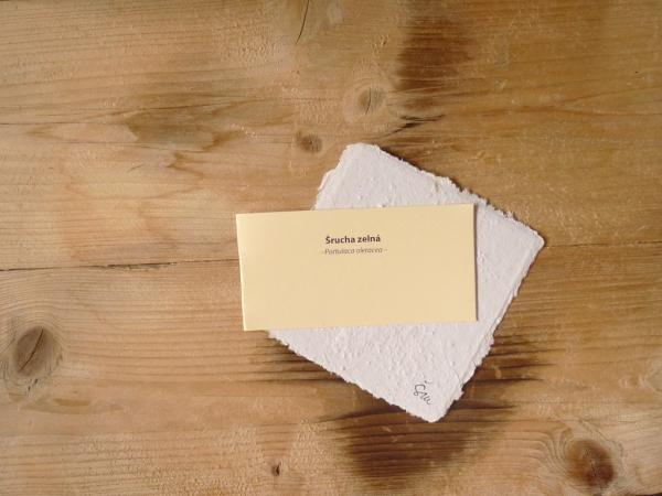 Ruční papír velký se semínky šruchy zelné