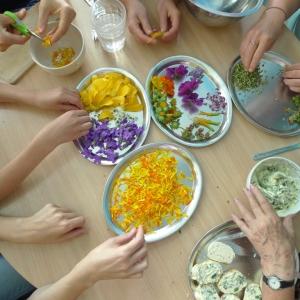 Celodenní kurz, botanická výprava a kulinární workshop